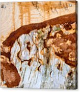 Wooden Landscape - Natural Abstract Structure Acrylic Print