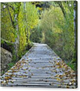 Wooden Path Acrylic Print