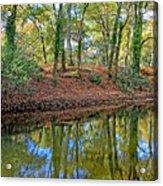 Woodland Canal 2 Acrylic Print