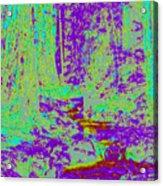 Woodland Forest D4 Acrylic Print