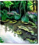 Woodland Mystery Acrylic Print