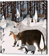 Woodland Nature Acrylic Print