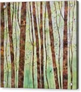 Woodland Spring Acrylic Print
