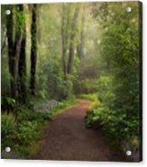 A New Spring Acrylic Print