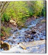 Woodland Stream And Waterfall, Hickory Run, Pocono Mountains Acrylic Print