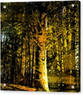Woodland Tapestry Acrylic Print