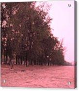 Woodlands At The Beach Acrylic Print