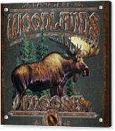 Woodlands Moose Acrylic Print