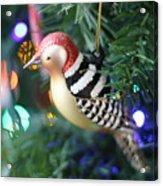Woodpecker Ornament Acrylic Print