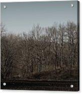 Woods Among The Trees Acrylic Print