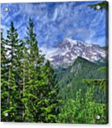Woods Surrounding Mt. Rainier Acrylic Print