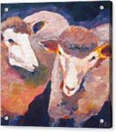 Wool Marketing Board Acrylic Print