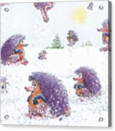 Woolly Snow Hoppers Acrylic Print