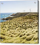 Woolnorth Wind Farm And Ocean Landscape Tasmania Acrylic Print