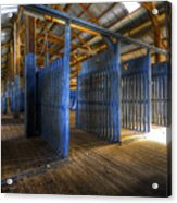 Woolshed Blues Acrylic Print