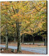 Words End State Park Drive Acrylic Print