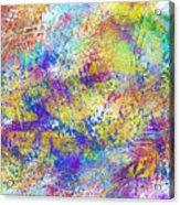 Work 00101 Abstraction Acrylic Print