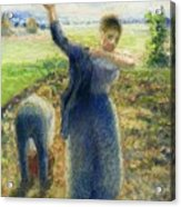 Workers In The Fields 1896-97 Camille Pissarro Acrylic Print