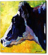 Working Girl - Holstein Cow Acrylic Print