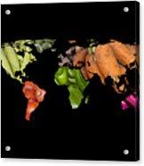 World Fruits Vegetables Map Acrylic Print