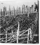 World War I Barbed Wire Acrylic Print