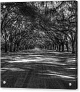 Wormsloe Plantation 2 Live Oak Avenue Art Acrylic Print