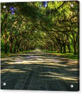 Shadows Of Wormsloe Plantation Oak Avenue Georgia Art Acrylic Print