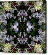 Wornhole Mandala Acrylic Print