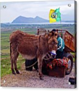 Would You Like A Ride In Ireland Acrylic Print