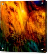 Wounded Earth 2 Acrylic Print