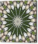 Woven Circle Acrylic Print