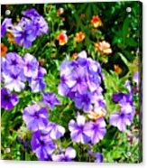 Wp Floral Study 2 2014 Acrylic Print