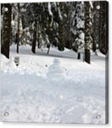 Wrong Way Snowman Acrylic Print