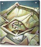 Ws1975ny002 Space Landscape 23 X 34.9 Acrylic Print