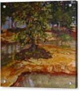 Wylie's Island Acrylic Print