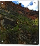 Wyoming Red Rocks Acrylic Print