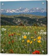 Wyoming's Winds Acrylic Print