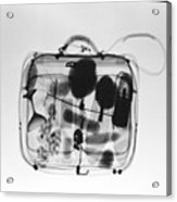 X-ray Of Suitcase Acrylic Print by Science Source