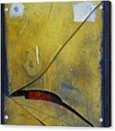 Xalapa Miro Acrylic Print