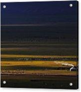 Xin Jiang 04 Acrylic Print
