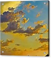 Y Cactus Sunset 10 Acrylic Print