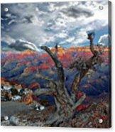 Yaki Point Grand Canyon Acrylic Print