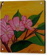 Yamazakura Or Cherry Blossom Acrylic Print