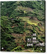 Yangtze Hillside Acrylic Print
