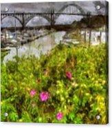 Yaquina Bay Roses Acrylic Print