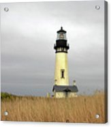 Yaquina Lighthouses - Yaquina Head Lighthouse Western Oregon Acrylic Print by Christine Till
