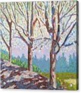Yay-springtime Acrylic Print