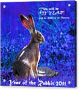 Year Of The Rabbit 2011 . Square Blue Acrylic Print