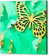 Yellow And Green Butterfly Acrylic Print