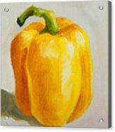 Yellow Bell Pepper Acrylic Print
